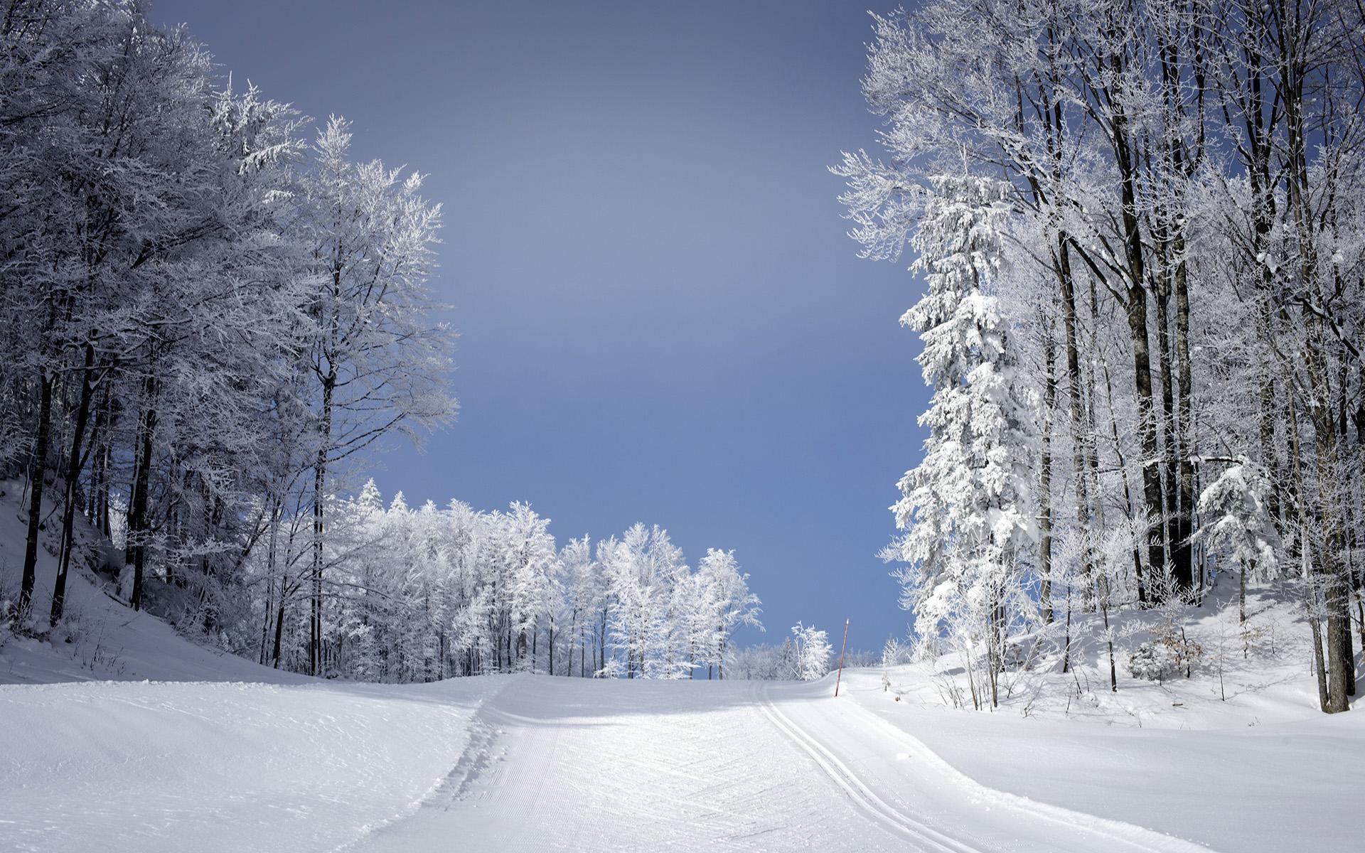 piste-neige-et-ski-montagne