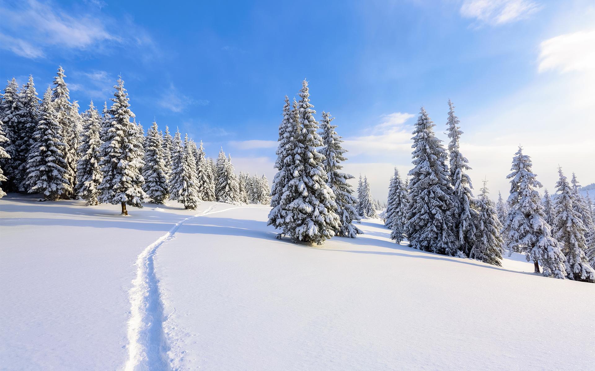 trace-dans-la-neige-montagne