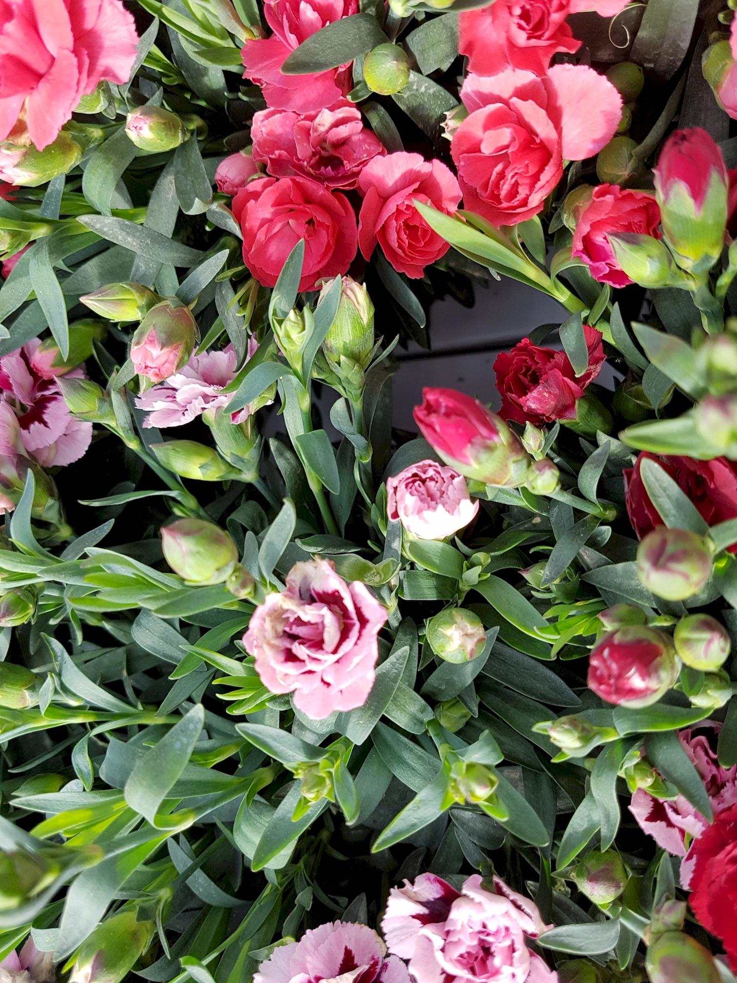 mettre-des-fleurs-sur-votre-tablette