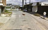 Photos-surprises-animaux-by-Google-Street-PAPILLON
