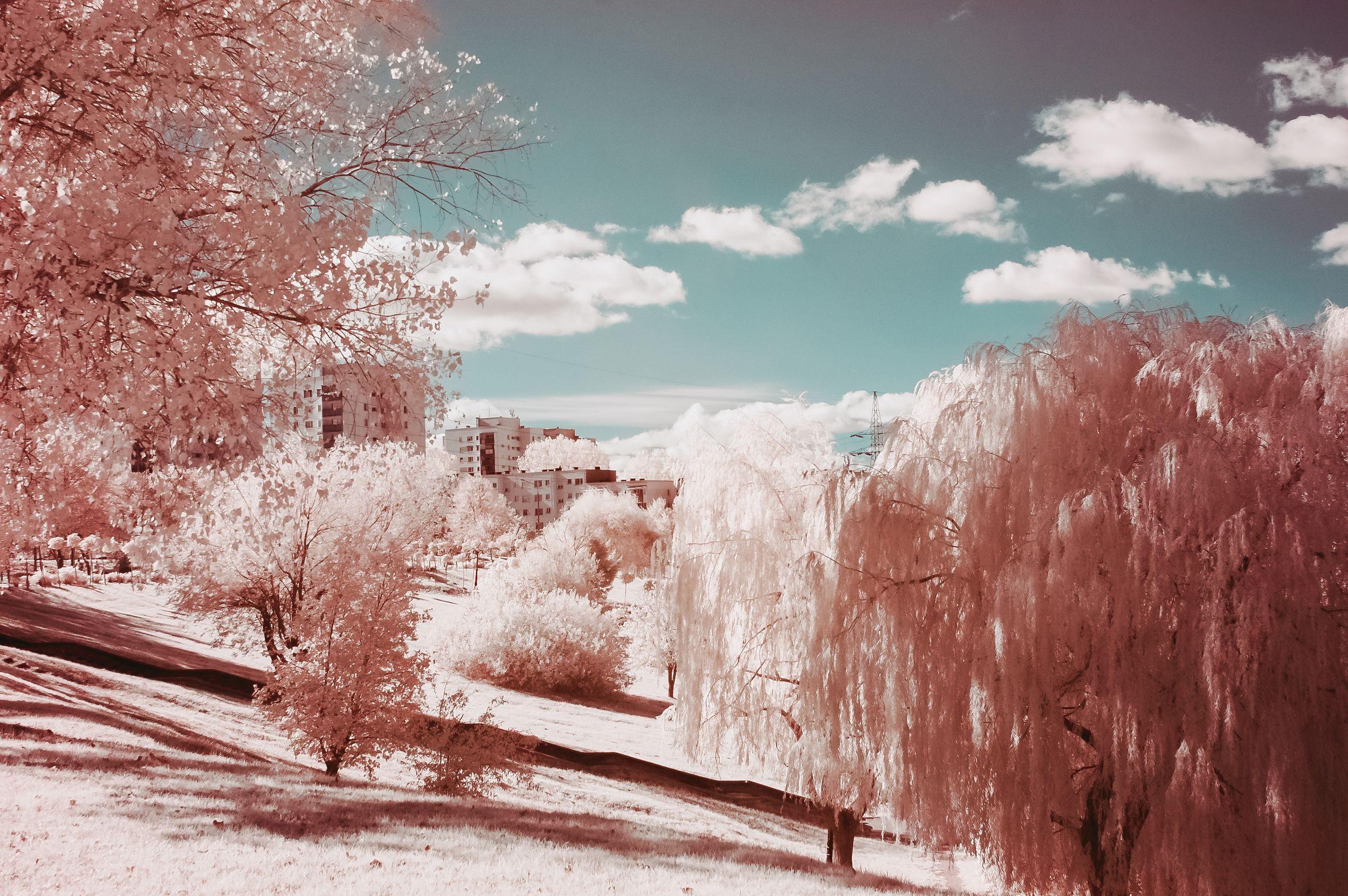 paysage-neige-rouge