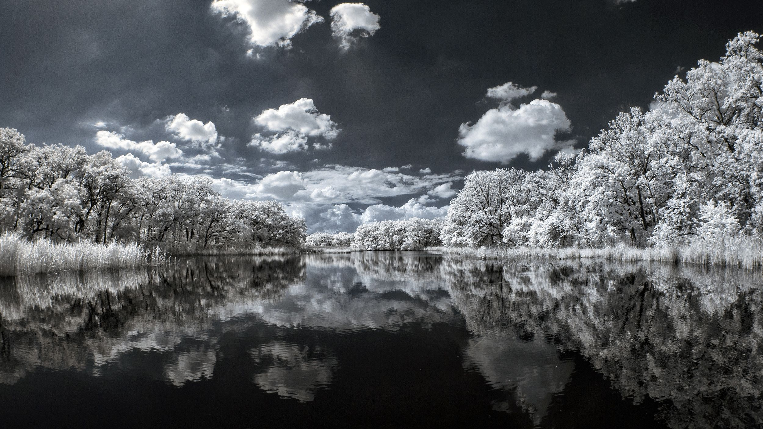 photo-IR-lac-et-arbres