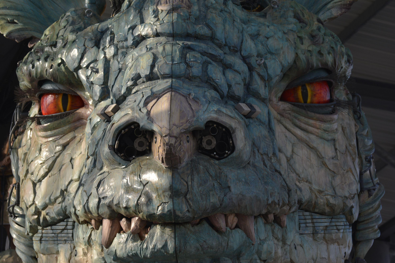 chasseur-de-dragon_face-a-face