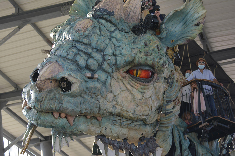 chasseur-de-dragon_le-decor