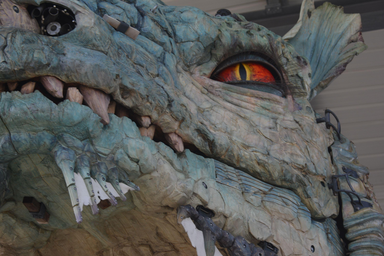 chasseur-de-dragon_photographie