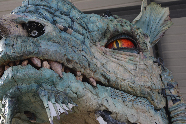 oeil-du-dragon