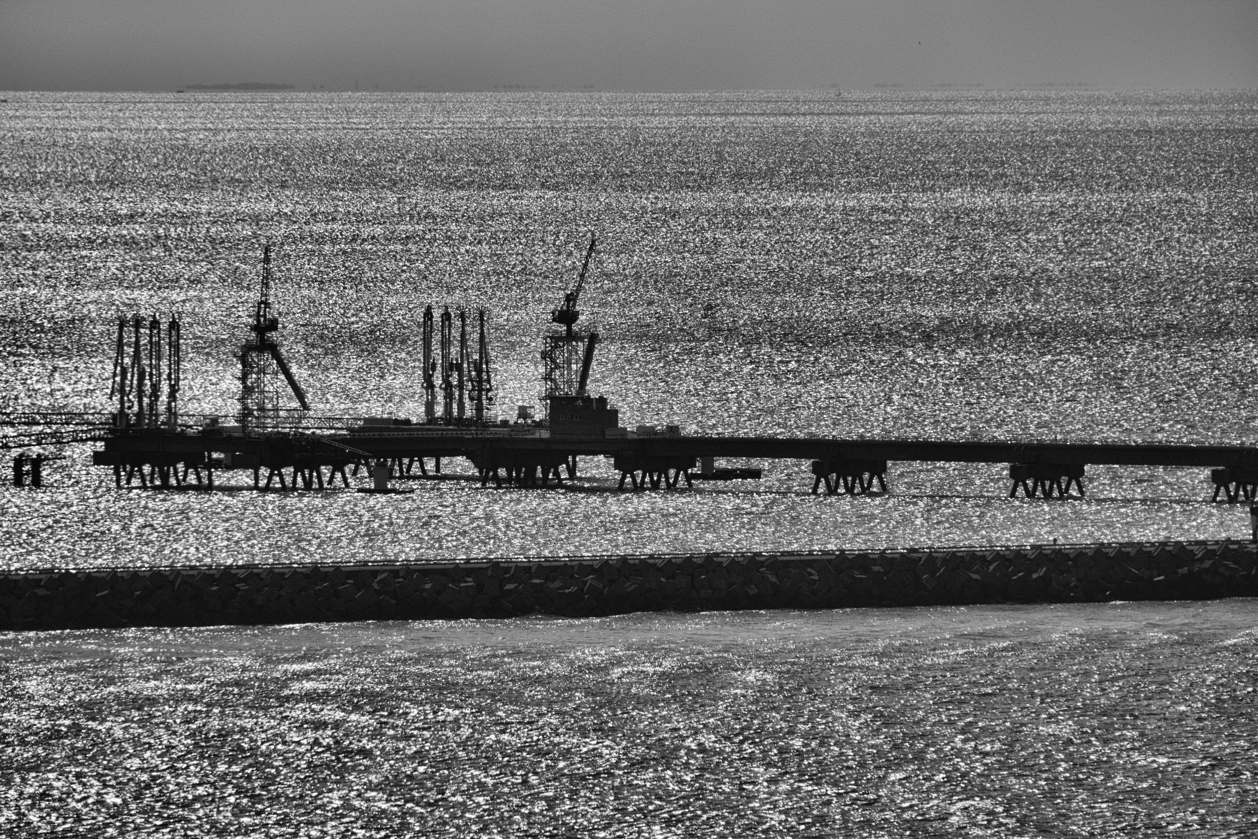 exposition-en-ligne-petrole