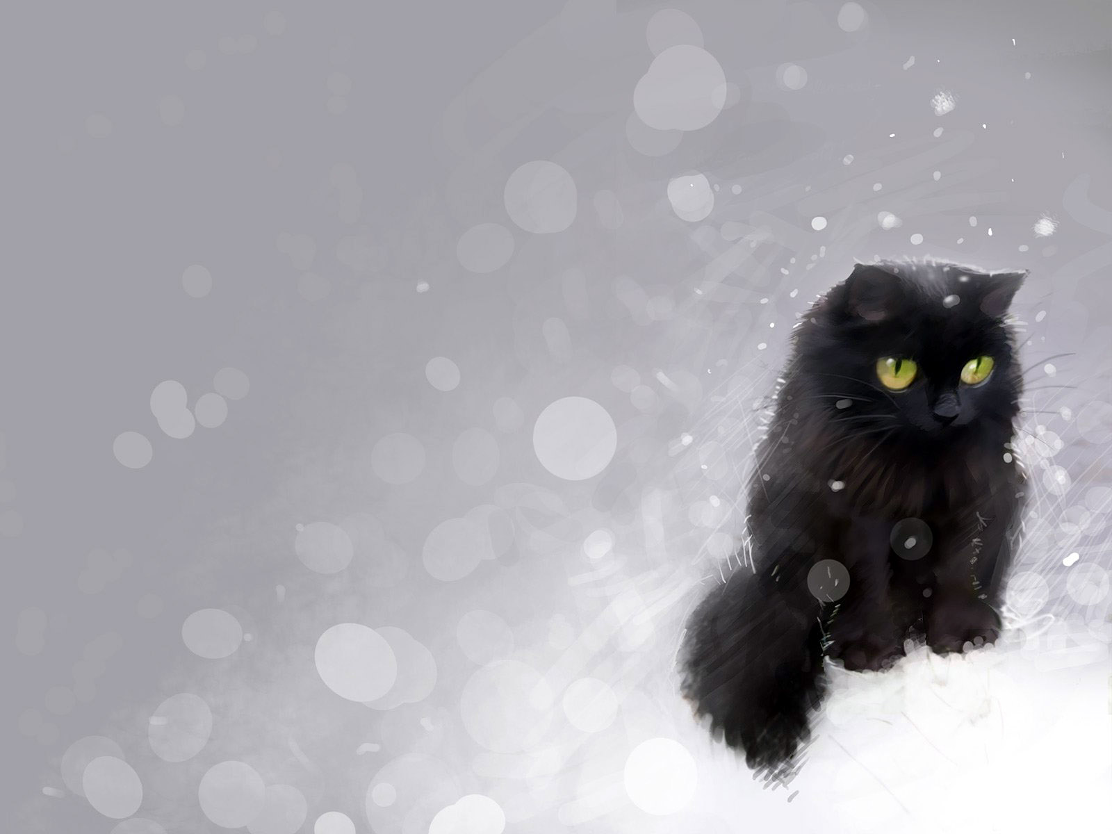 des-chats-tous-mignons_15