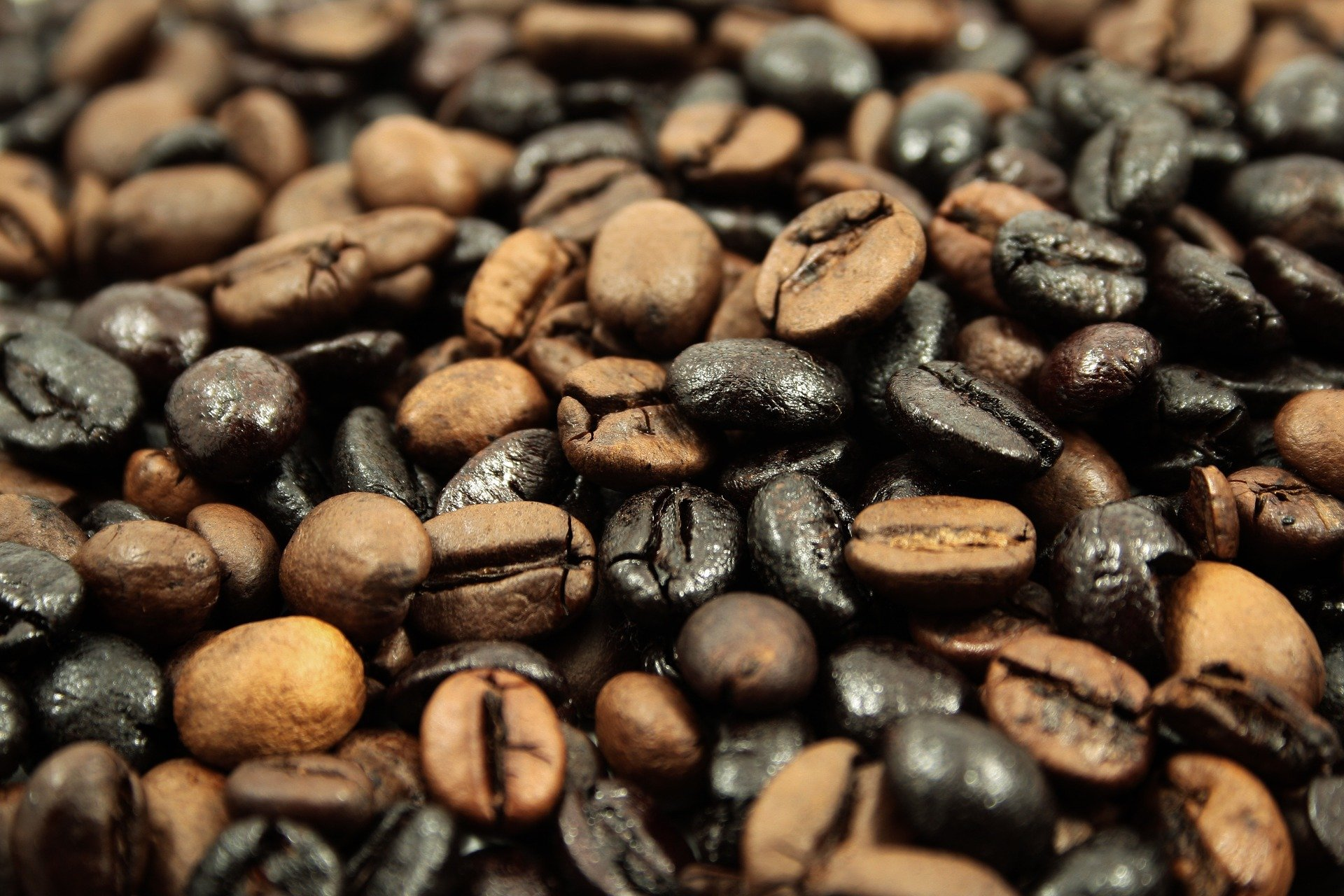 grains-de-cafe-agrandi-en-photo