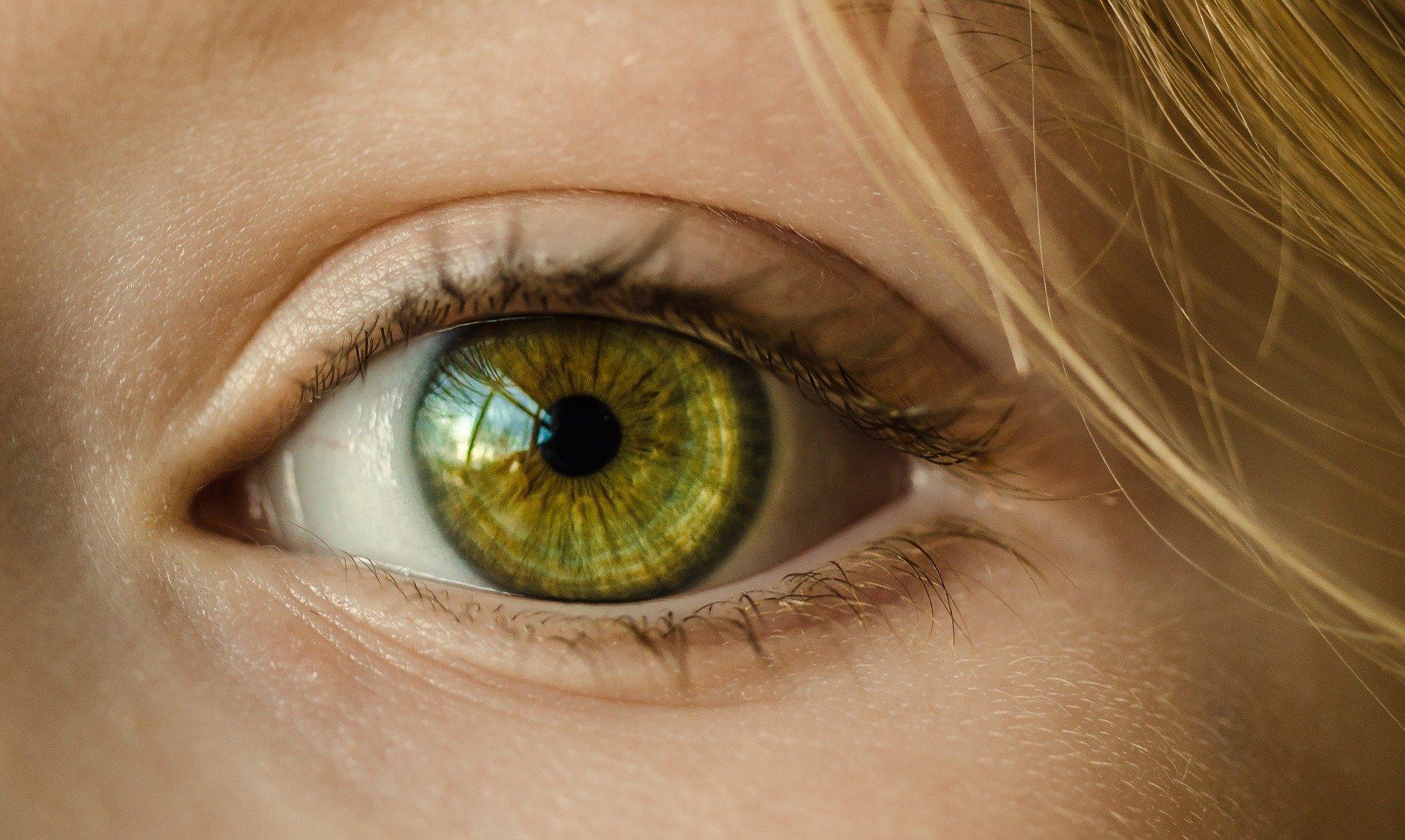 oeil-macro
