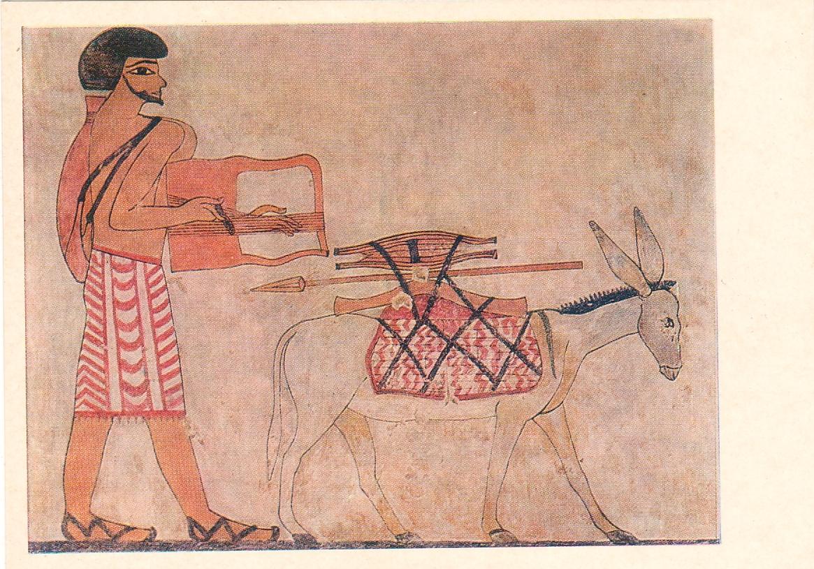 egypte-ancienne-papyrus_03